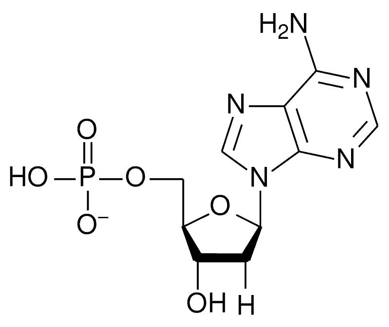 DNA 5